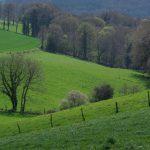 Un paysage valonné ©JPG