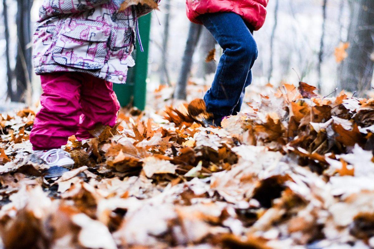 Accueils de Loisirs – Vacances d'automne