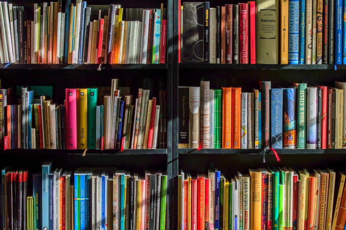 Ouverture des bibliothèques en septembre